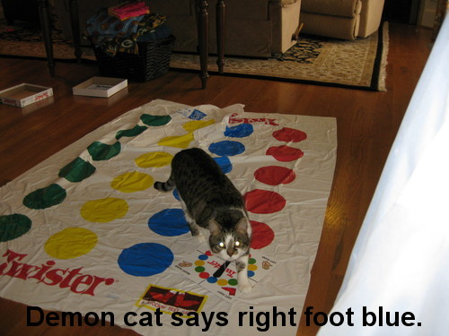 Oie_LOLCat_Plays_Twister