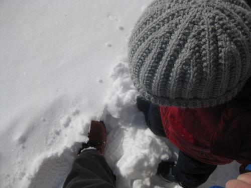 March Snow Footprints
