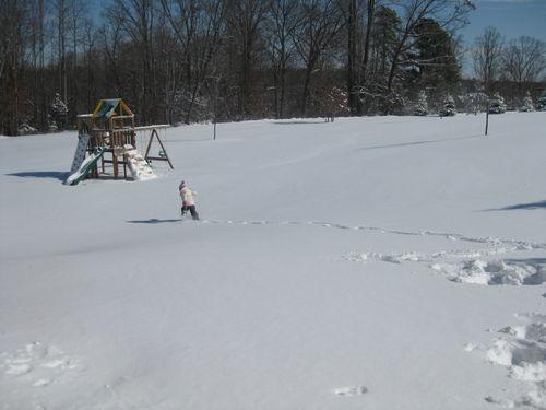 March Snow Backyard 2