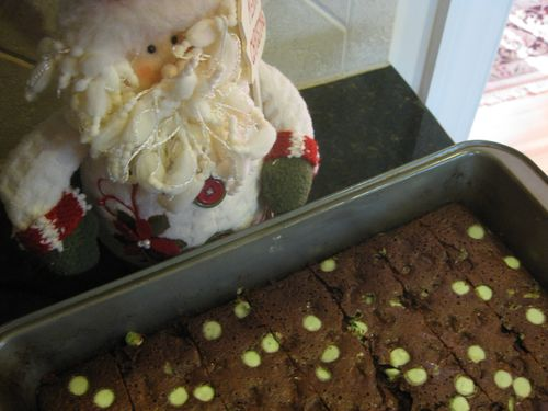 Blog - Mint Brownies and Santa